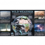 Free BBC 'Wild Weather' Poster
