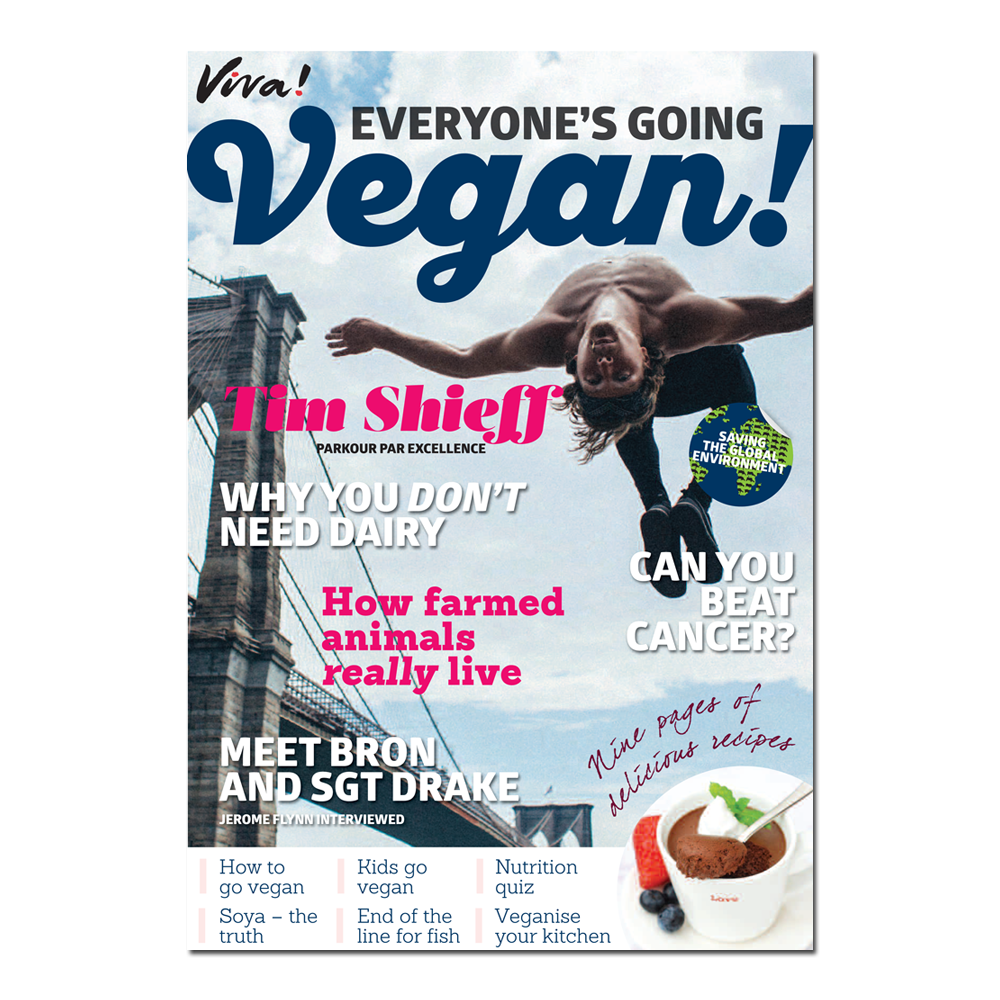 Order Your Freepack Today, Containing Viva!'s Ever