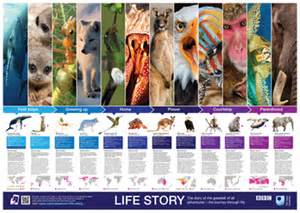 Free BBC Life Story Poster