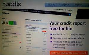 Free Noddle Credit Report